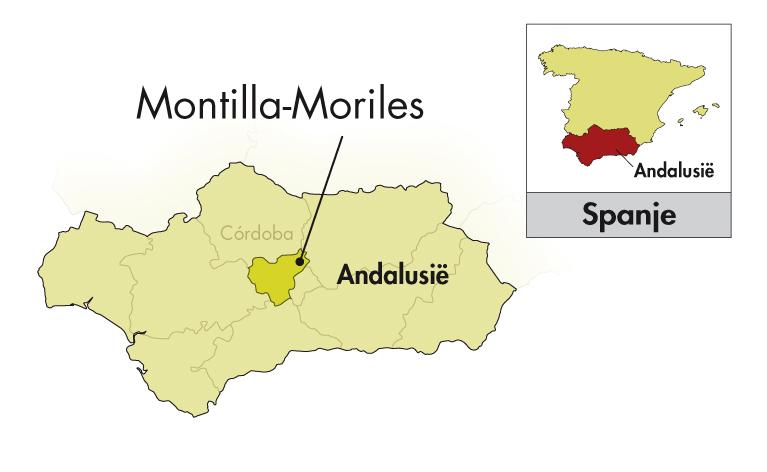 Alvear Montilla-Moriles Amontillado Carlos VII halve fles