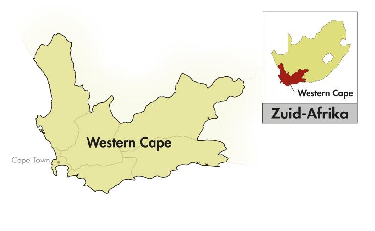 DeMorgenzon Stellenbosch DMZ Chenin Blanc